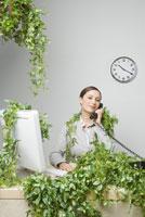 Businesswoman in plant covered office 11029015797| 写真素材・ストックフォト・画像・イラスト素材|アマナイメージズ