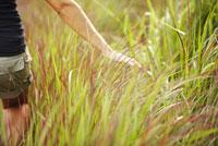 Woman walking through tall grass 11029015978| 写真素材・ストックフォト・画像・イラスト素材|アマナイメージズ