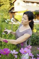 Woman pruning flowers 11029016700| 写真素材・ストックフォト・画像・イラスト素材|アマナイメージズ