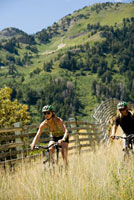 Couple riding bicycles on mountain trail