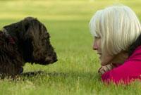 Woman laying grass looking at dog