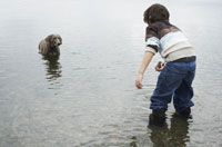 Boy Playing with Dog on Beach 11030000593| 写真素材・ストックフォト・画像・イラスト素材|アマナイメージズ