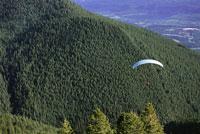 Person Paragliding over Trees 11030007869| 写真素材・ストックフォト・画像・イラスト素材|アマナイメージズ