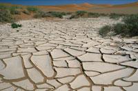 Dry Mud Patterns in Desert