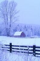 Barn in Winter 11030011014| 写真素材・ストックフォト・画像・イラスト素材|アマナイメージズ