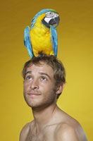 Portrait of Man with Parrot on Head