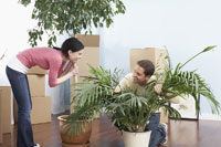 Couple with House Plants in New Home