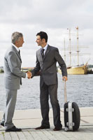 Businessmen Shaking Hands by Waterfront