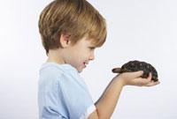 Child Holding Turtle