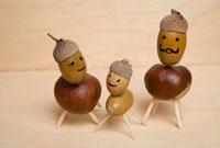 Nut Family