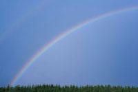 Rainbow over Trees,Salzburg,Austria