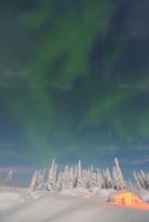 Nothern Lights, Nissi, Nordoesterbotten, Finland 11030033086| 写真素材・ストックフォト・画像・イラスト素材|アマナイメージズ