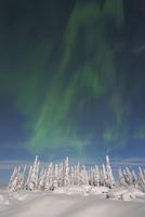 Nothern Lights, Nissi, Nordoesterbotten, Finland 11030033087| 写真素材・ストックフォト・画像・イラスト素材|アマナイメージズ
