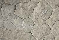 Cracked Soil, Nanortalik, Kujalleq, Kejser Franz Joseph Fjor