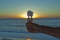 Hand Holding Lightbulb at Sunset, Cape Town, Western Cape, C