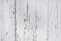 Detail of Wooden Wall, Cap Ferret, Gironde, Aquitaine, Franc 11030035891| 写真素材・ストックフォト・画像・イラスト素材|アマナイメージズ