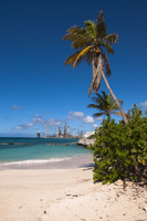 Oil Refinery in Distance of Rodgers Beach, Aruba, Lesser Ant