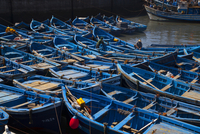 Blue Fishing Boats in the Harbour of Essaouira, Marrakesh-Te
