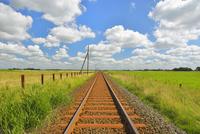 Railroad  in the Summer, Toenning, Schleswig-Holstein, Germa