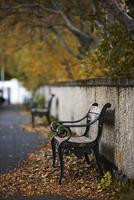 Empty bench at autumn in Reykjavik, Iceland. 11030038267| 写真素材・ストックフォト・画像・イラスト素材|アマナイメージズ