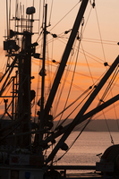 Rigging of Fishing Boats Silhouetted against Sky at Sunset, Prince Rupert, British Columbia, Canada