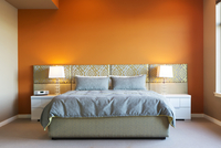 Modern Style Master Bedroom with Bold Colors and Custom Furniture