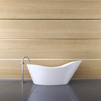 3D-Illustration of Bathtub