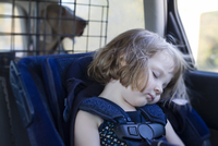 Young girl sleeping in her car-seat, with Weimaraner dog in the background, Canada