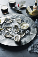 Plate of Oysters, Studio Shot