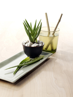 Aloe Plant and Juice on Textured Wooden Background, Studio Shot