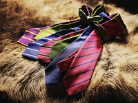 Colorful Striped Ties on Brown Fur, Studio Shot
