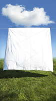 Clean white sheet hanging on clothes line in field, Canada