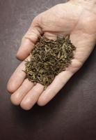 Hand Holding Green Tea Leaves    11030042765| 写真素材・ストックフォト・画像・イラスト素材|アマナイメージズ