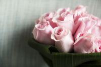 Close-up of Bouquet of Pink Roses 11030043046| 写真素材・ストックフォト・画像・イラスト素材|アマナイメージズ