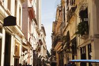 Busy Street Scene, Havana, Cuba