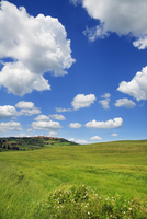 Agricultural landscape and cumulus clouds on a sunny day at noon, Pienza, Val d'Orcia, Siena, Tuscany, Italy