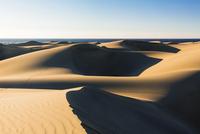 Dunes of Maspalomas at sunrise, with the Atlantic ocean, San Bartolome de Tirajana, Gran Canaria, Las Palmas, Canary Islands