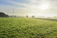 Countryside in Morning with Sun, Freiensteinau, Vogelsbergkreis, Hesse, Germany 11030047076| 写真素材・ストックフォト・画像・イラスト素材|アマナイメージズ