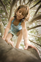 Low angle view of young girl climbing a tree, Rhode Island, USA