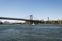 Williamsburg Bridge and Manhattan Skyline from Brooklyn, New York City, New York, USA