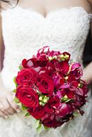 Close-up of of Bride holding Bouquet, Hamilton, Ontario, Canada