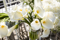 Cloes-up of Calla Lilies at Outdoor Wedding
