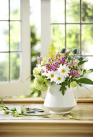 Bouquet of Fresh Cut Flowers containing Daisy, Flox, Sea Holly, Hydrangea, and Ragweed in White Pitcher Vase on Window Sill
