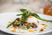 Close-up of black cod fish filet with Chinese sausage and rice side dish and green beans on a dinner plate, at an event, Canada 11030048709| 写真素材・ストックフォト・画像・イラスト素材|アマナイメージズ