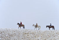 Cowboy with Two, Young Cowboys riding horses along Horizon in snow, Rocky Mountains, Wyoming, USA