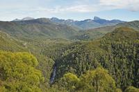 Frenchmans Cap and Franklin River, Franklin-Gordon Wild Rivers National Park, UNESCO World Heritage Area, Tasmania, Australia