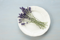 Lavender on Plate