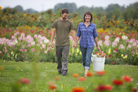 Couple Picking Flowers, Sauvie Island, Oregon, USA
