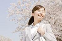 桜の下を歩く通勤中の女性