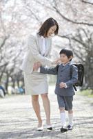 桜並木の下を歩く小学生男子と母親